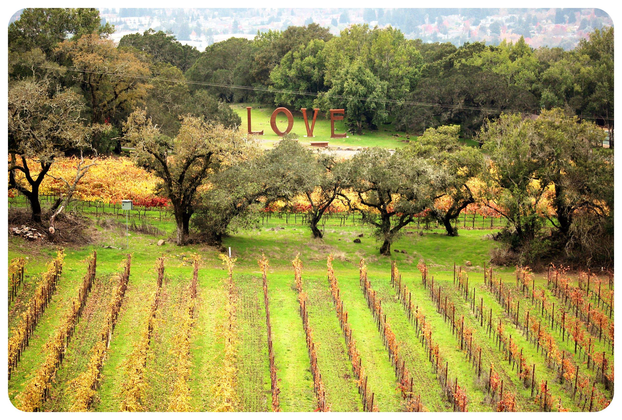 paradise ridge winery santa rosa