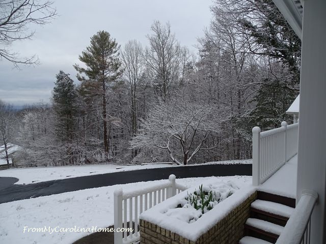 March Snow ~ From My Carolina Home
