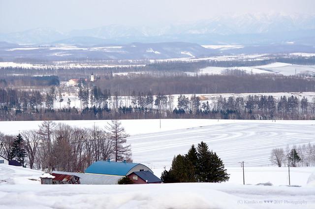 尖塔の見える丘