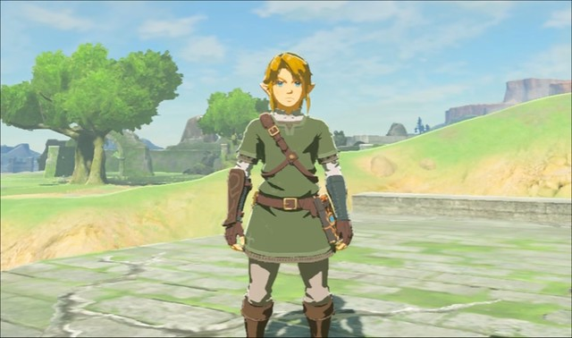 Breath of the WIld - Twilight Princess Outfit