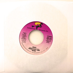 INNER CITY JAM BAND:WHAT I DID FOR LOVE(JACKET B)