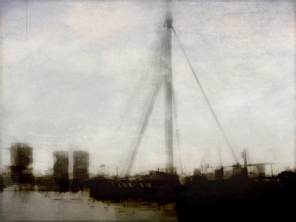 Erasmus bridge / Rotterdam