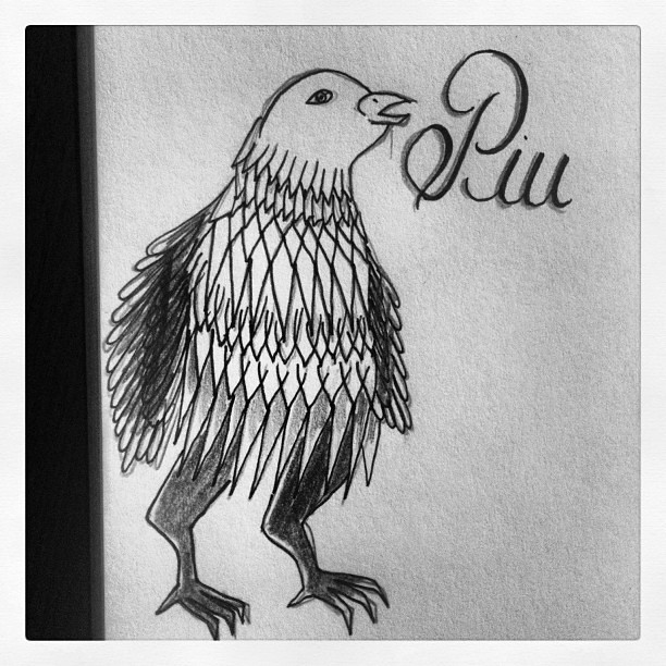 Piu Bird Passarinho Sketchbook Moleskine Bw Desenho Flickr