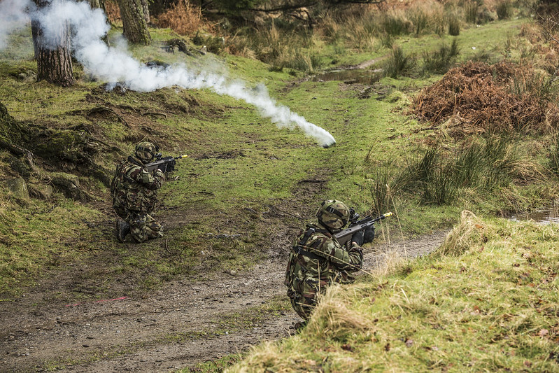 Armée Irlandaise/Irish Armed Forces - Page 2 33150547202_4a31f07ae0_c