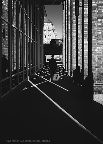 Lines, Street and Cat content - dedpxl01- Fuji X100S | by HamburgCam