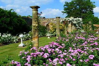 Rose Gardens at Hever Castle | by Jayembee69
