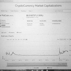 Bitcoin Double In 100 Hours Of Community