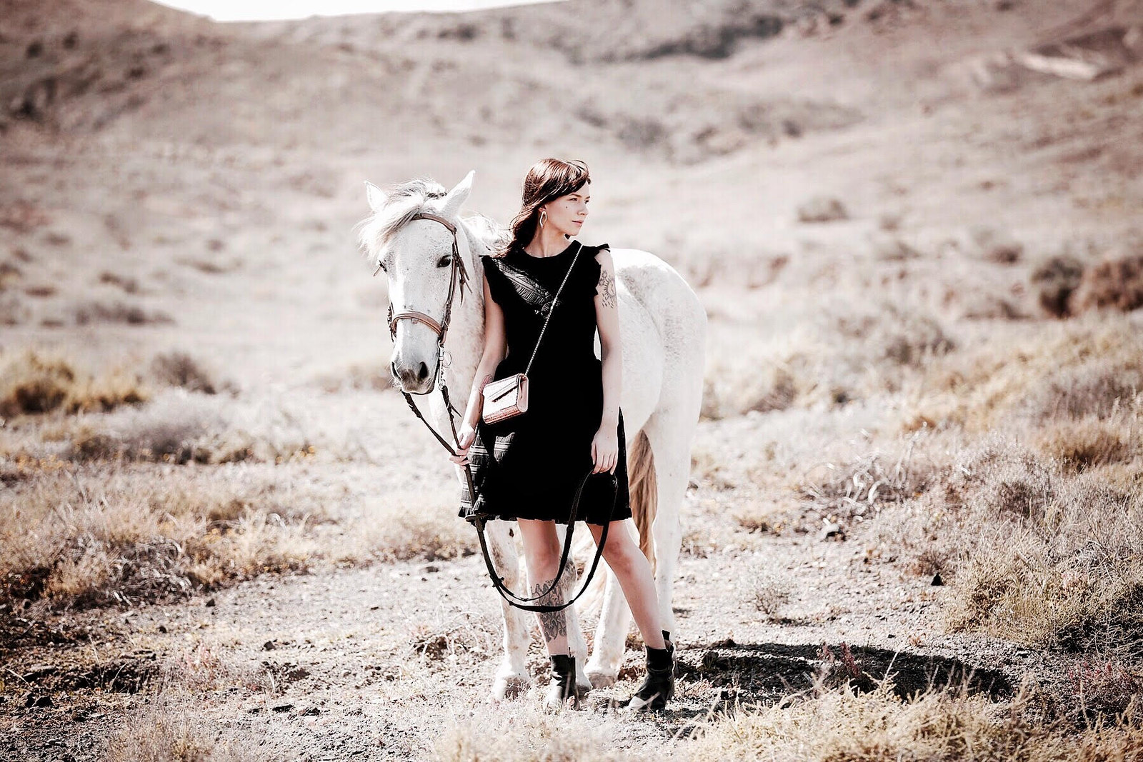 horse white desert jimmy choo glitter bag maje black cocktail dress cowgirl riding adventure freedom outfit ootd modeblogger breuninger fashionblog cats & dogs ricarda schernus düsseldorf 7