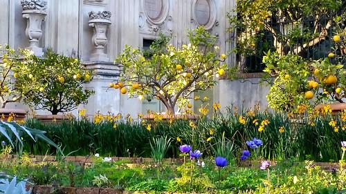 Giardino segreto giardino segreto di tramontana al for Giardino 3d gratis italiano