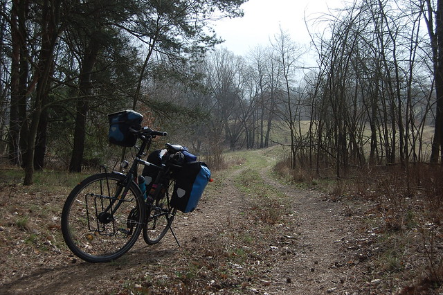 Bild: Das bepackte Fahrrad auf einem Waldweg mit etwas Sonnenschein