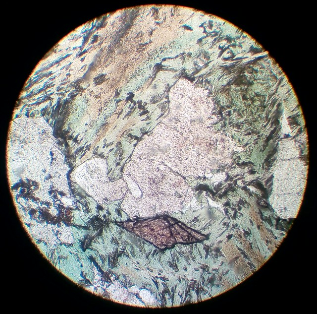 Titanite automorph crystal surrounded by chlorite (30 µm thin section, PPL)
