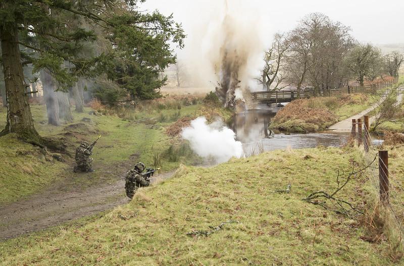 Armée Irlandaise/Irish Armed Forces - Page 2 33306225445_ee1b9870ee_c