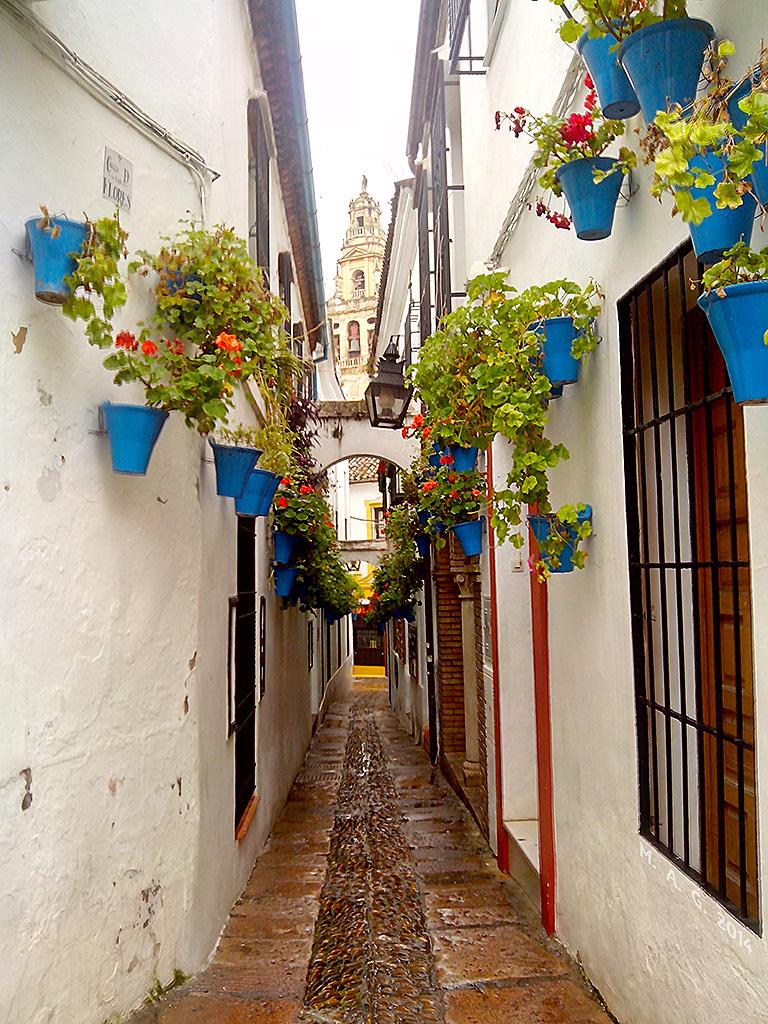 Calleja de las Flores - IMG_20140103_095735_flick