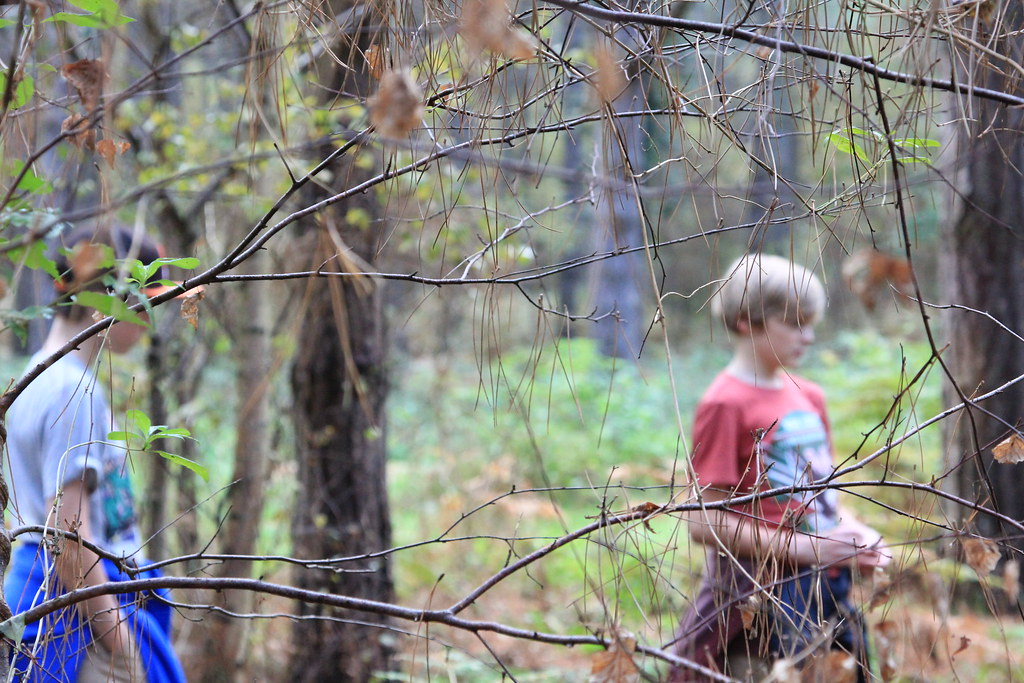 Image result for boys in the woods pictures