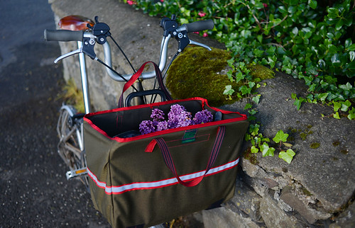Last Days of Lilacs | by Lovely Bicycle!
