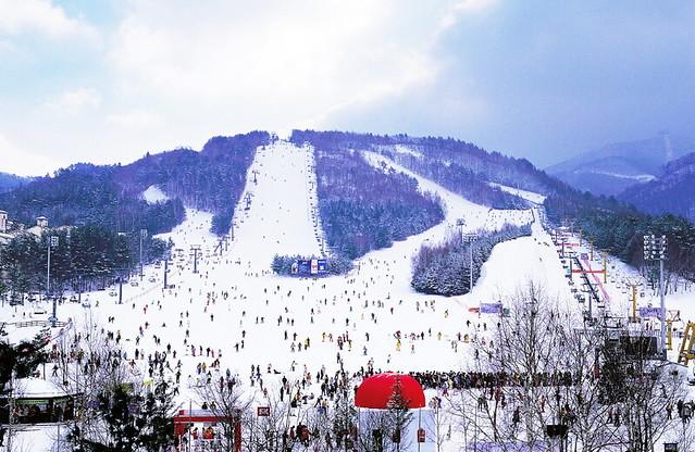 Yongpyong Alpine Centre 용평 알파인 센터