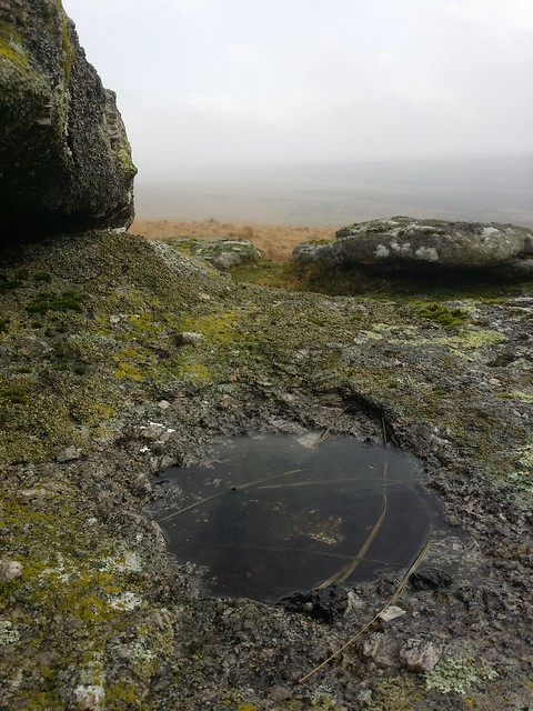 Shallow Rock Basin at White Ridge Tor (higher outcrop)