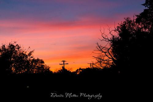 073/365 : Sunset