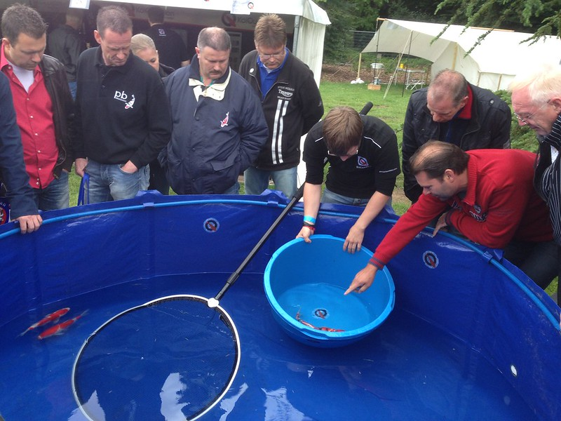 Bram Rohaan giving a Koi lecture