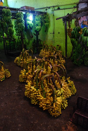 bananas 4, Colombo | by stickychopsticks