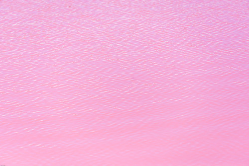 Pink Lake - Hutt Lagoon near Port Gregory, WA. | by nodeworx