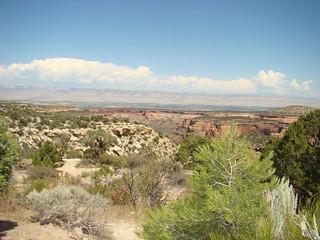 36 Colorado NM