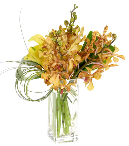 Arachnid Orchids — Leanne and David Kesler, Floral Design Institute, Inc., in Portland, Oregon | by Flower Factor