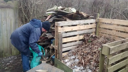 firewood Feb 17 (2)