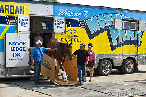 American Pharoah arrives at Monmouth Park for the Haskell | by creepy_coyote