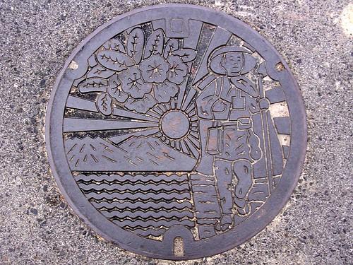 Hino Shiga, manhole cover (滋賀県日野町のマンホール)