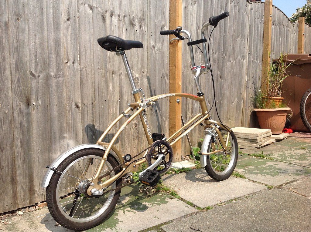 Carneilli Bigfish Folding Bicycle In Gold Weight Bike Only Flickr