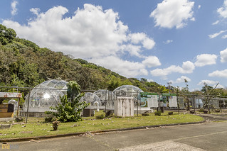 Smithsonian Tropical Research Institute - Tropical Dome Project gamboa panama pandemonio 2017 - 02 | by Eva Blue