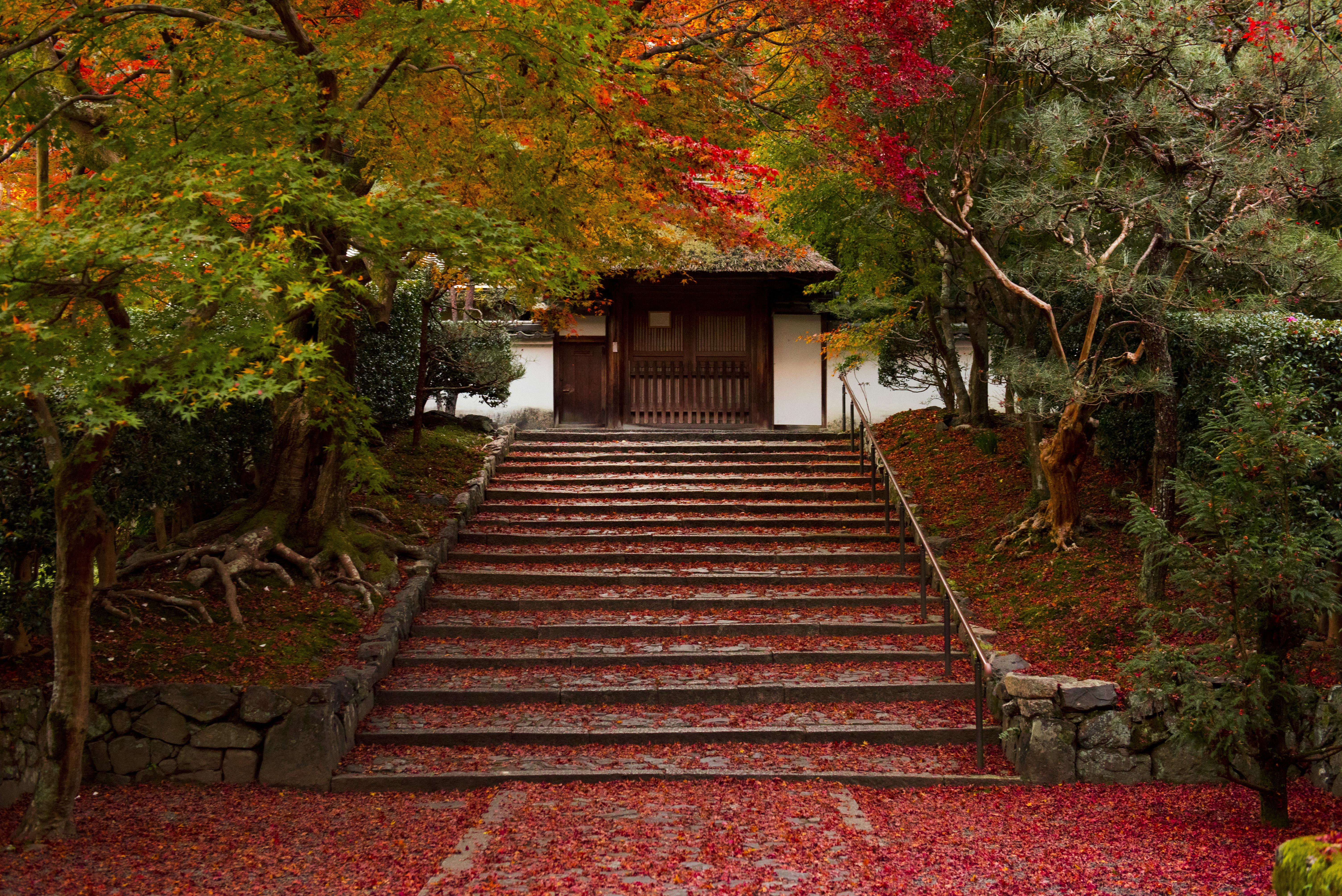 Anraku-ji 安楽寺