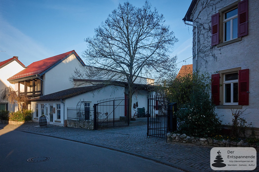 Weingut Wilmshof in Selzen
