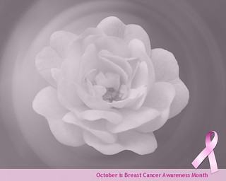 October is Breast Cancer Awareness Month | by jacilluch