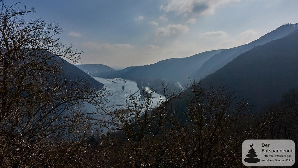 Rheintal beim Binger Wald