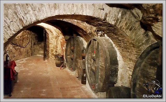 Bodegas medievales don Angel y don Carlos en Aranda de Duero  (13)