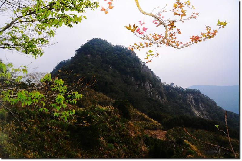 相思園望尖石山 2