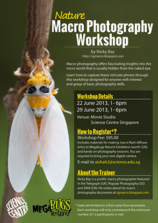Macro Photography Workshop Poster | by nickybay