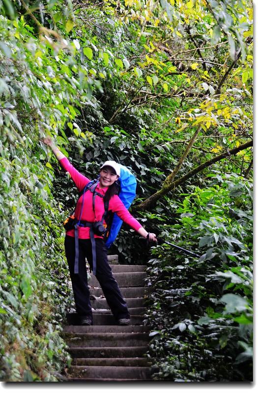 北大武山登山步道 2