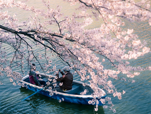 Boat under cherry blossoms | by taketan (Takeshi Tanaka)