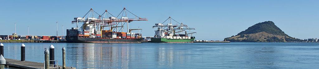 Containerschiffe in Tauranga