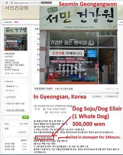 Friendship City Campaign - Gyeongsan, South Korea – San Bernadino, California