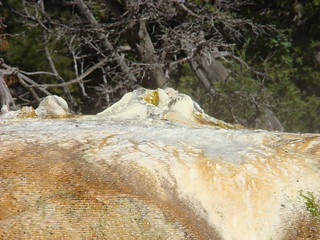 31 Orange spring mound