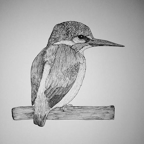 how to draw big bird& 39