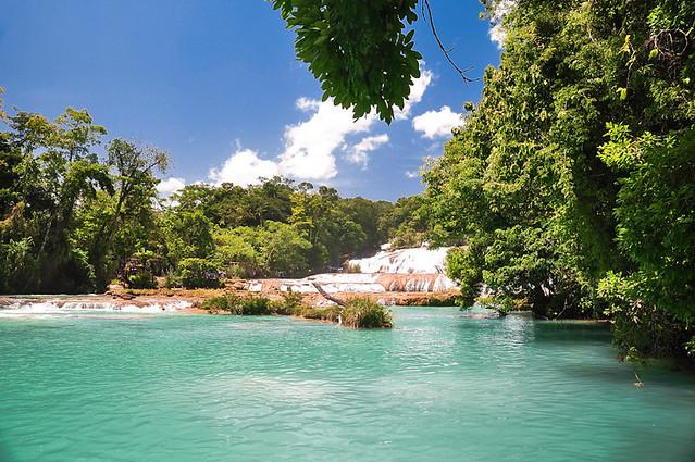 Cascadas de Agua Azul (14)