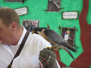 Ready to Fly | by Hawkhurst CEP School Web Site Photos