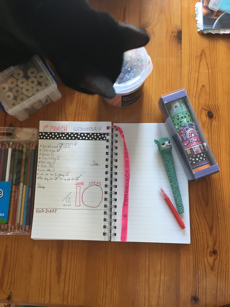Bullet Journal - Luna