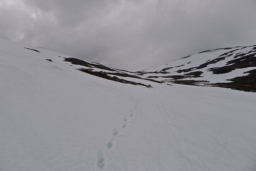 Snowy descent from Ben Macdui | by Nick Bramhall