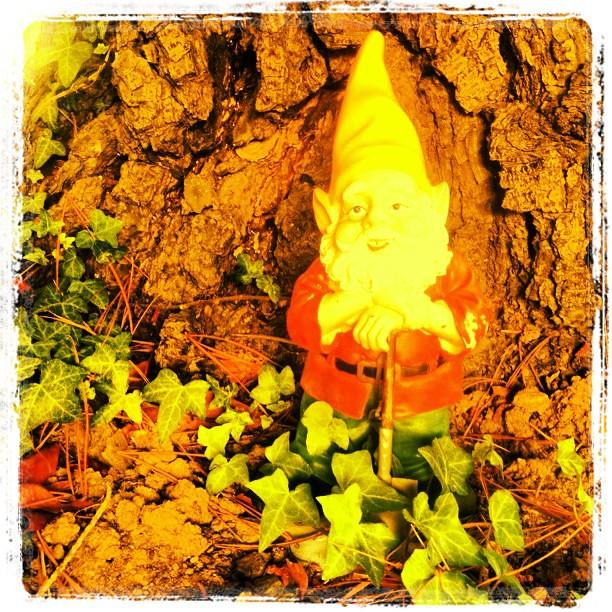 ... Garden Gnome Standing By Tree #gnome #garden #decor #kitsch #novato #